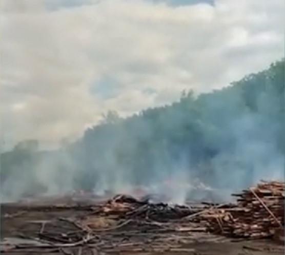 «Кто хозяин?»: приморцы возмущены масштабными пожарами