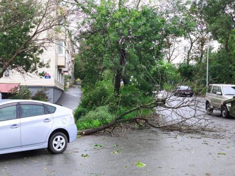 Депутаты отменили законы о выплате компенсаций пострадавшим от тайфунов