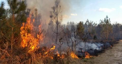 Вторые сутки тушат пожар возле аэропорта Магадана