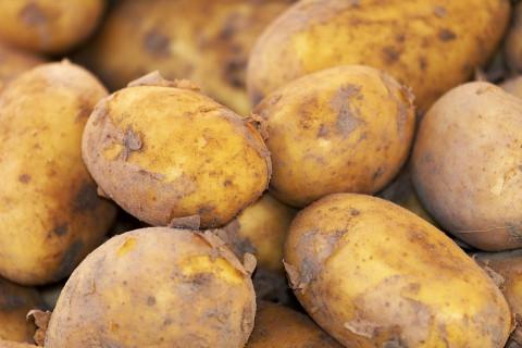 В магазинах хотят продавать «картошку для бедных»