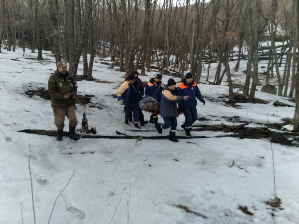 Медведь напал на туриста рядом с базой отдыха в Приморье