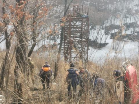 «Там был медвежонок»: охотнадзор рассказал о нападении медведицы на туриста в Приморье