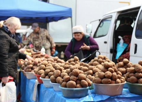 Золотая картошка: какие продукты подорожают осенью