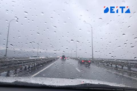 В Приморье продолжат идти дожди