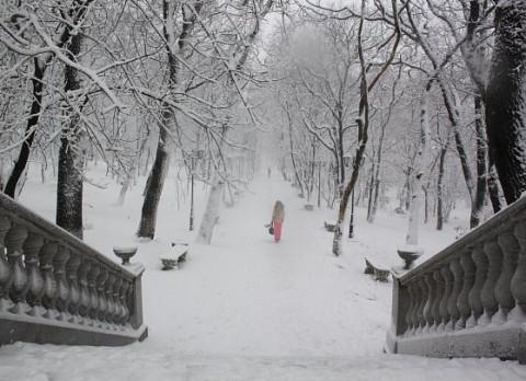 Метель и гололед: Приморье ждет первый снегопад