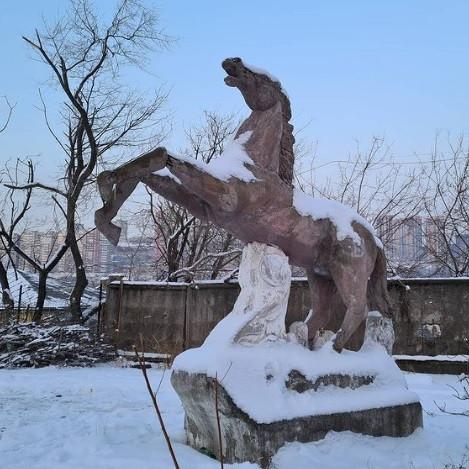 Ценную землю с домами и памятником коню продают во Владивостоке