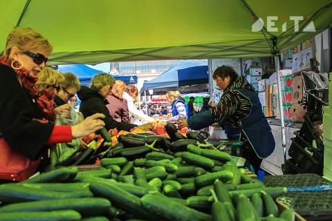 Российские власти придумали, за счёт чего снизятся цены на продукты