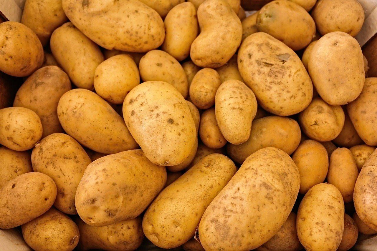 Почему покупать мелкую картошку будет выгодно