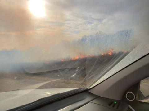 Лес в Приморье дымит так, что дым увидели во Владивостоке