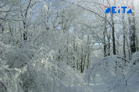 Морозно и ветрено будет в Приморье в пятницу