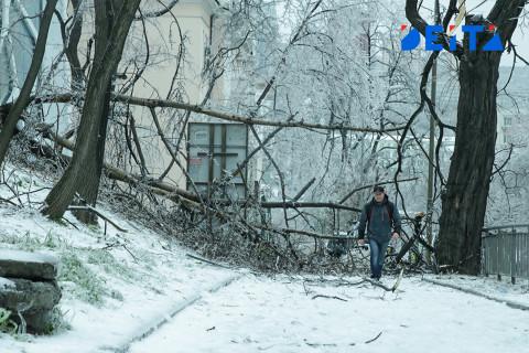 Виновных в коллапсе после ледяного дождя ищут в Приморье