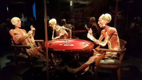 Жуткую выставку мертвых людей хочет заблокировать Следком
