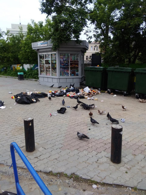 Центр Владивостока очистили от мусора благодаря соцсетям