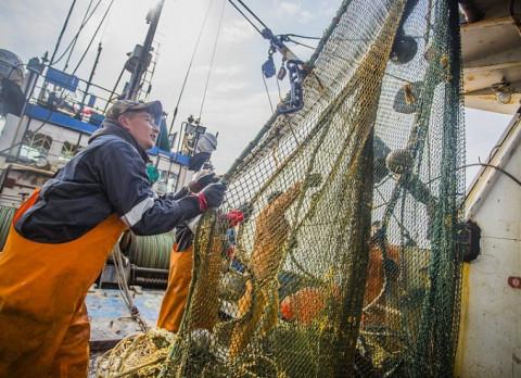 Приморские рыбаки увеличили вылов в два раза