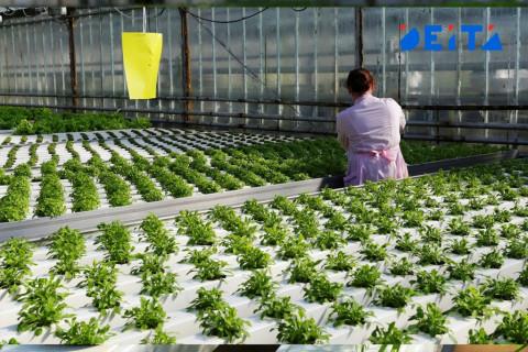 Сельхозпроизводителям снизили налоги в Приморье