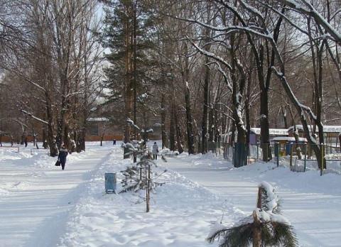 Будет много снега: Природные аномалии обещает Примгидромет в декабре