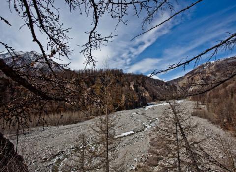 Климатическая весна не успевает за календарной в Приморье