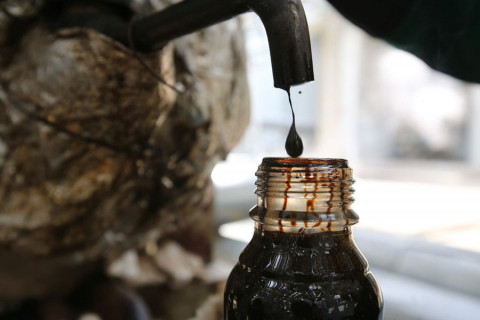 Эксперты предрекли катастрофическое падение цен на нефть