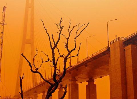 Кубай предрек резкое изменение погоды в Приморье