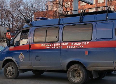 В Приморье возбудили уголовное дело о наезде бульдозера