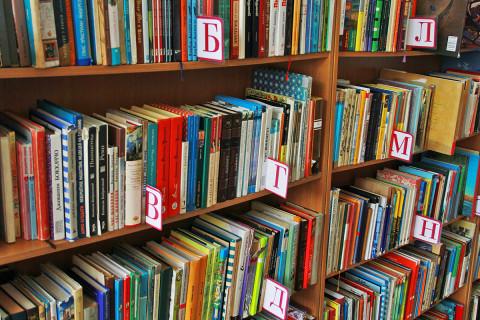 Крупное воровство на учебниках подозревают в России