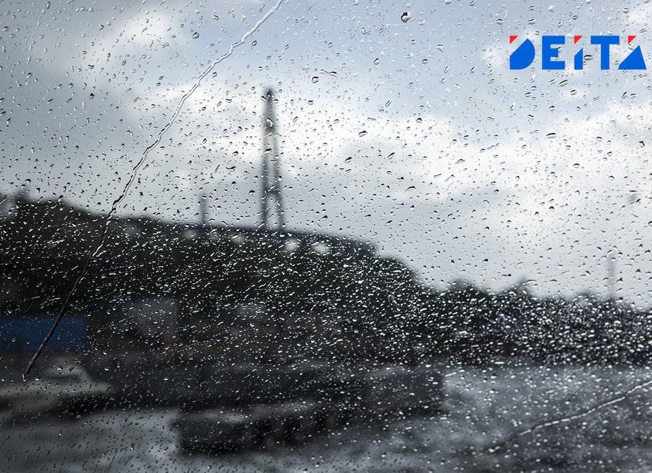 Слабый дождь и сильный ветер ждут приморцев во вторник
