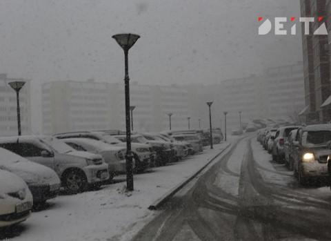 Метель и ураган будут бушевать в Приморье в четверг