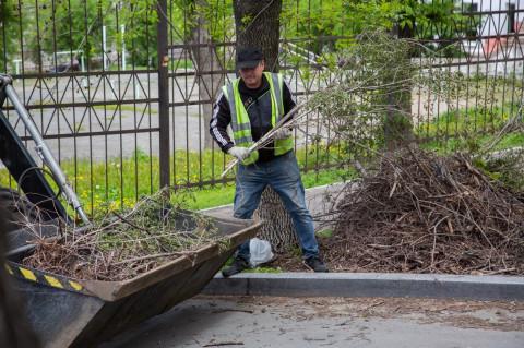Дорожные рабочие вывезли 13 тысяч тонн веток с улиц Владивостока
