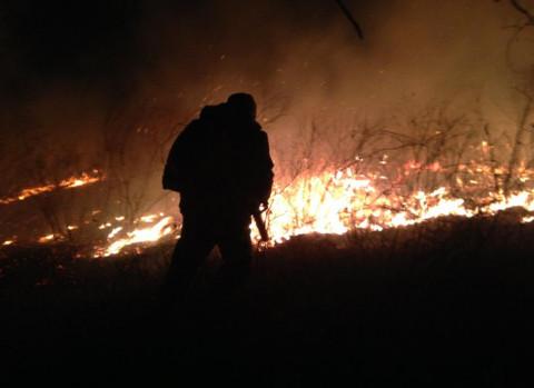 Якутских чиновников отправят тушить лесные пожары