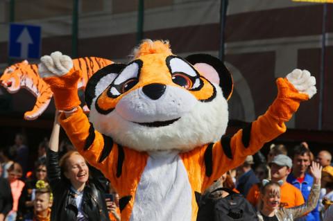 Праздник, посвящённый амурскому тигру, широко отметили во Владивостоке