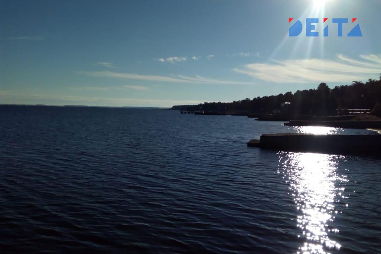 Много земли с видом на Амурский залив продают во Владивостоке