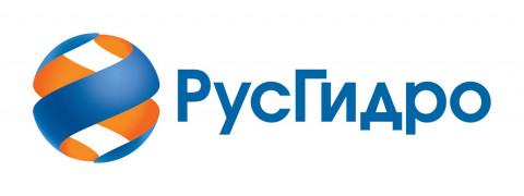 РусГидро поддерживает проведение совещания по вопросам электроэнергетического комплекса ДФО на уровне руководителя Правительства России
