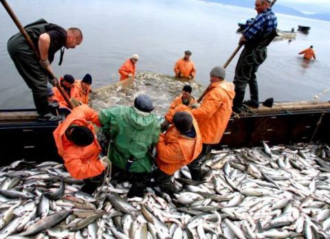 Двое рыбаков скончались на рабочих местах в Приморье