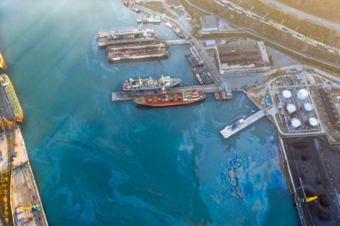 Общественники не увидели работ по ликвидации нефтяного пятна в Находке
