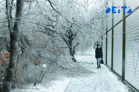 Северный ветер принесёт Приморью мороз и немного снега