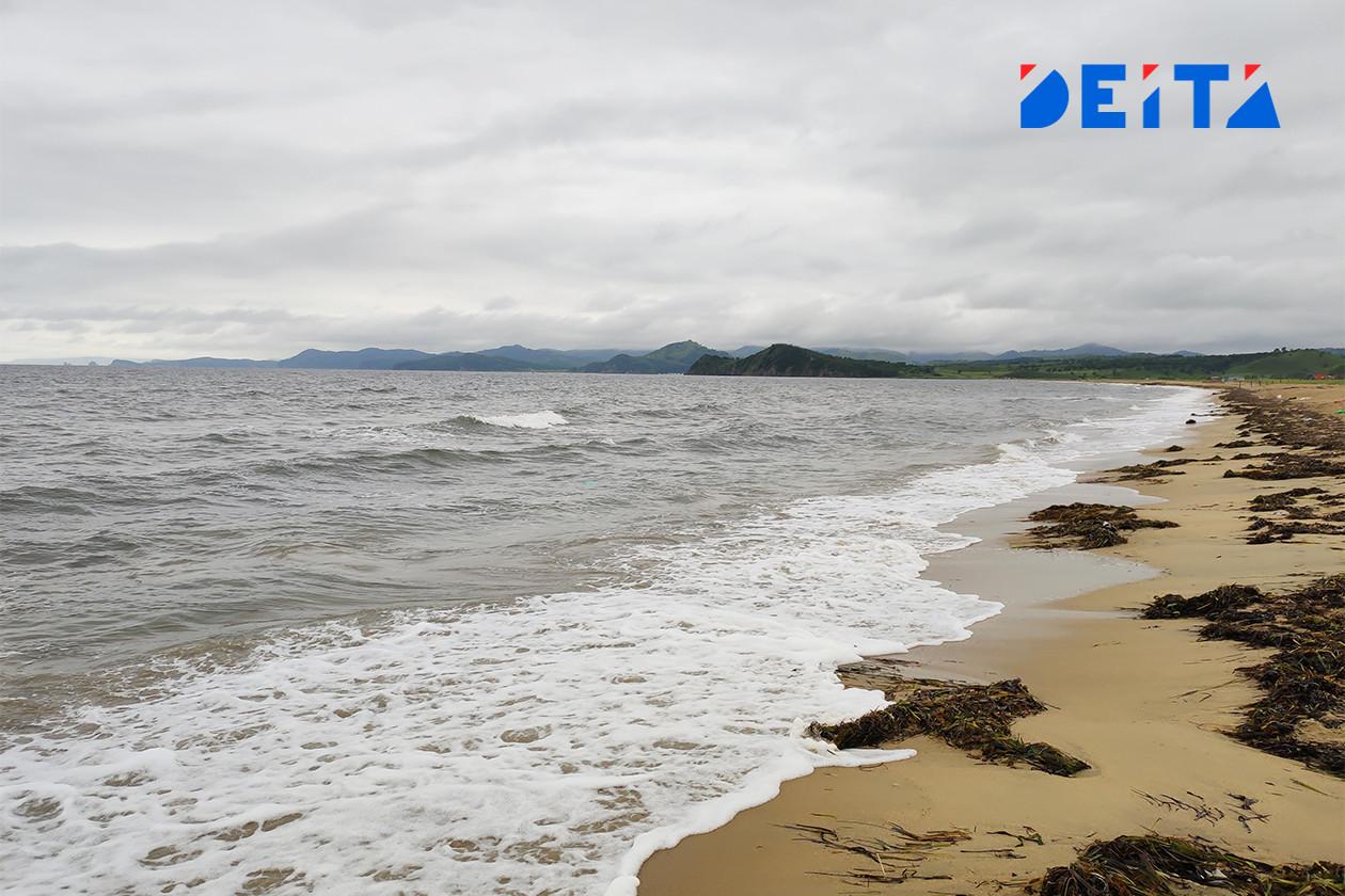 Стало известно, что собираются сделать с популярным пляжем «Шамора» в Приморье