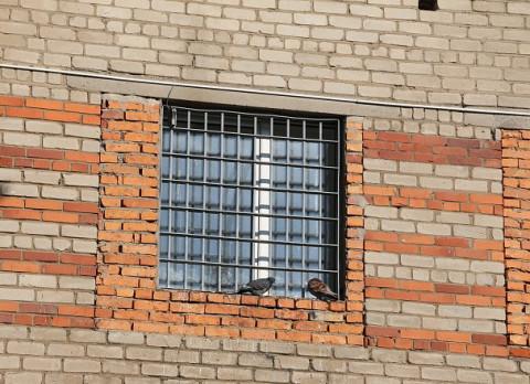 Жительнице Владивостока дали 10 суток из-за штрафа в 40 тысяч
