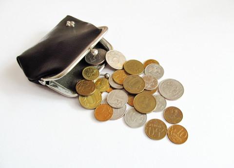 В Госдуме призвали вывести из обращения все металлические рубли
