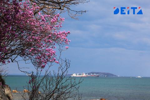 Синоптики озвучили прогноз на майские каникулы