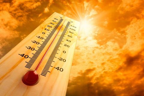 В Приморье наблюдается аномальная жара