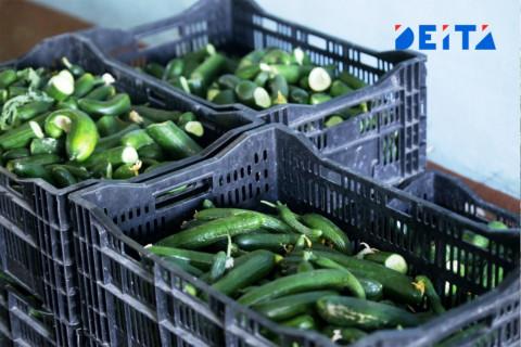 Жители Приморья могут приобрести качественный фермерский продукт на интернет-ярмарке