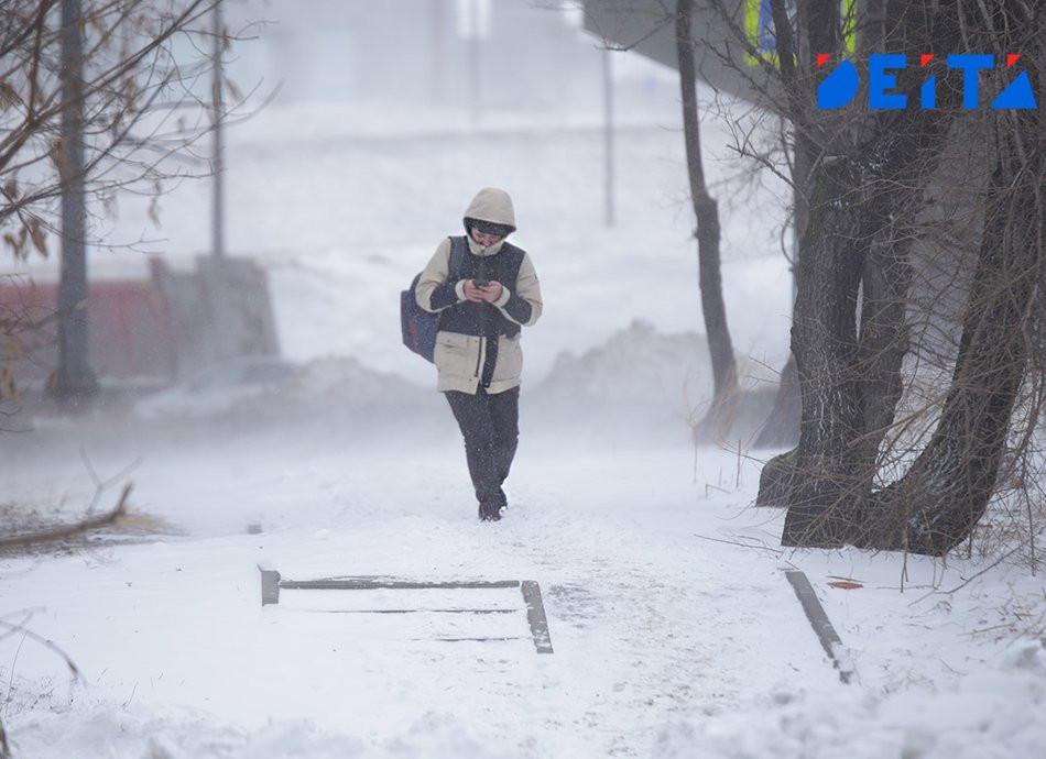 Февраль в Приморье начнётся со снега и морозов